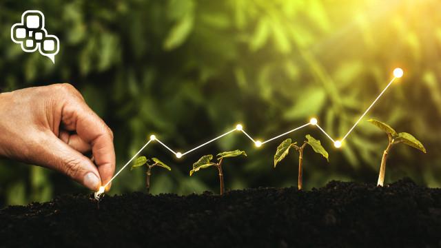 Şirket Değerlemesi Nedir? Nasıl Belirlenir?